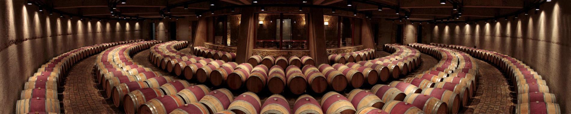 sala de barriles vino catena