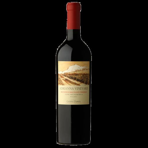 adrianna vineyard mundus bacillus terrae.png