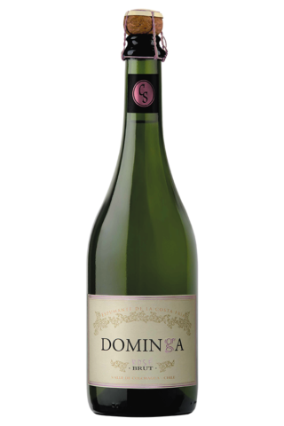 vino espumante dominga brut rose chardonnay pinot noir.png